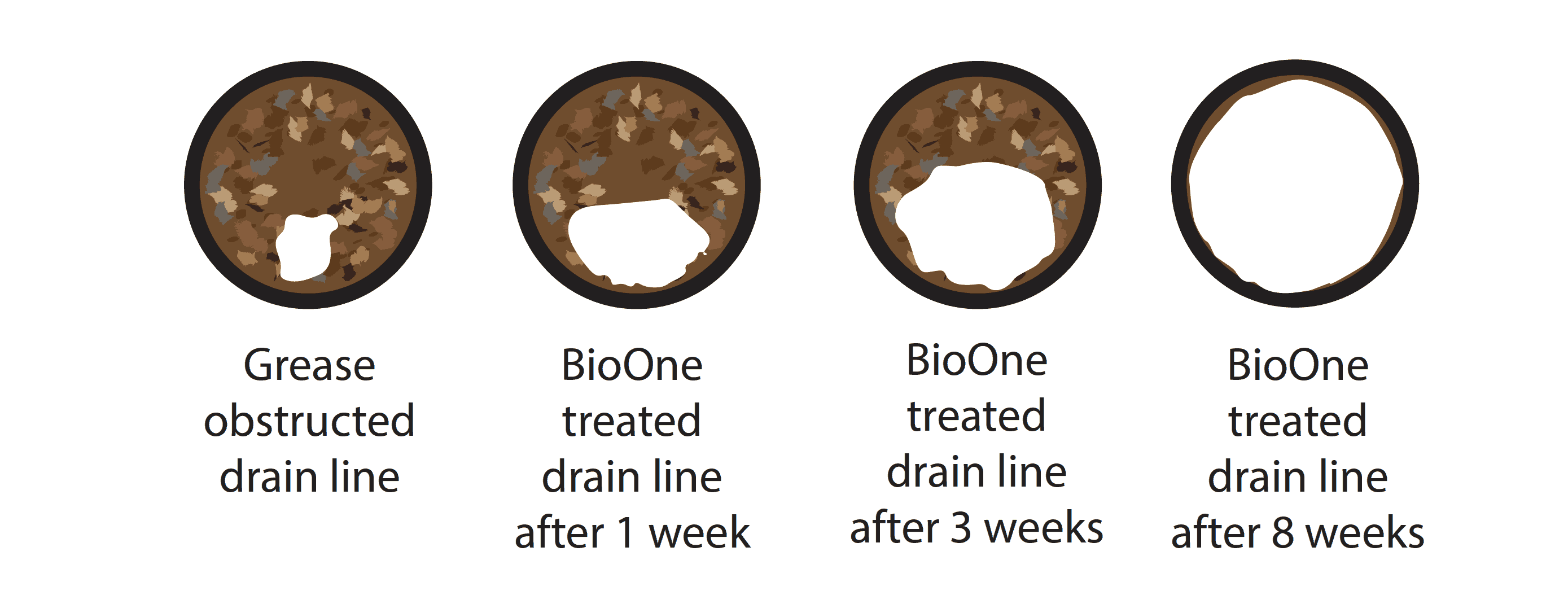 Bio One Drain Cleaning